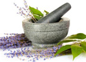 Herbs in a pestle and mortar